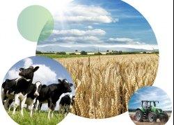 Wykaz danych zbieranych w spisie rolnym